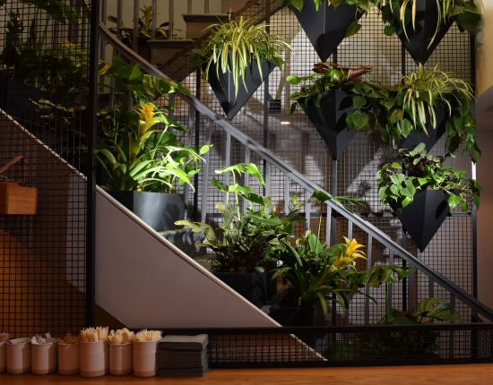 Plants incorporated in restaurant designs