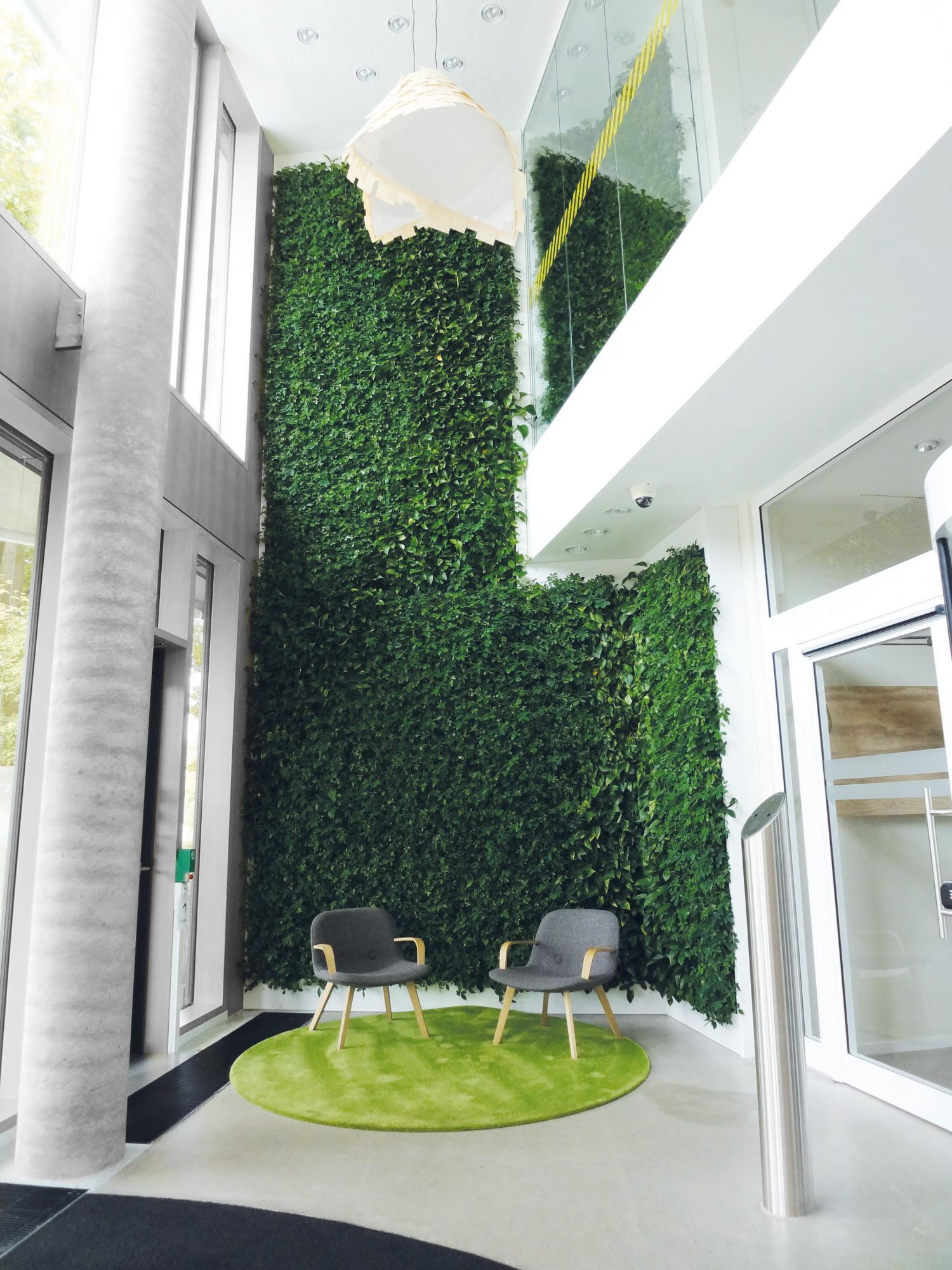 interior green wall Just Plants